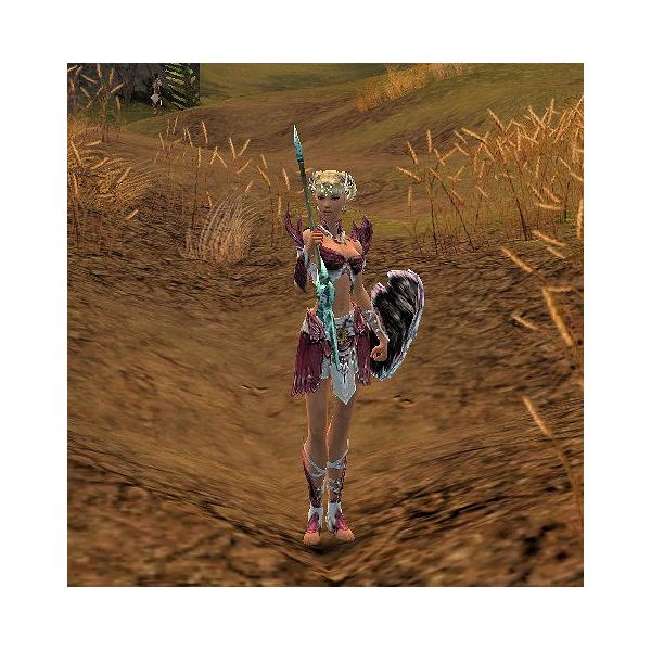 guild wars how to use wardrobe