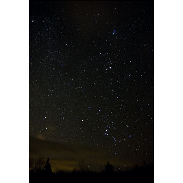 Orion, Taurus, and the Pleiades