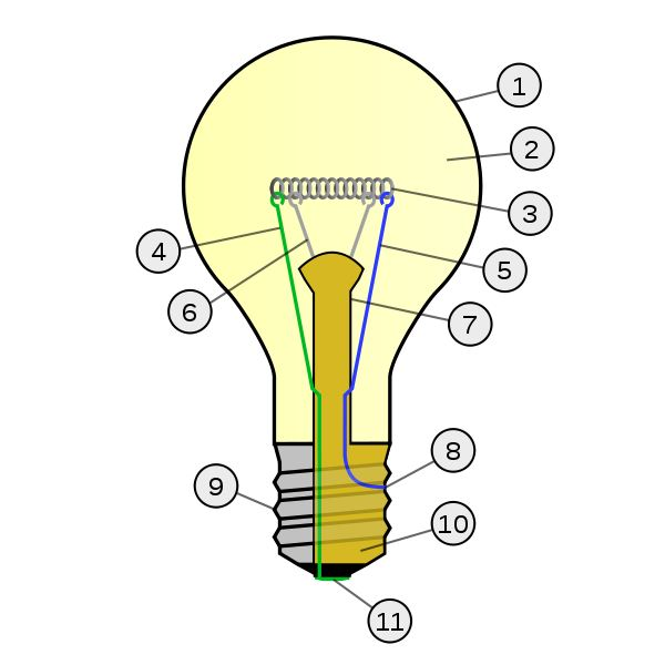 How a Light Bulb Works