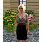 The Sims 3 Fashion Game