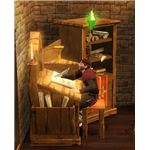 The Sims Medieval Peteran Priest Writing with the Watcher