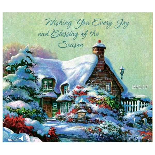 Winter themed christmas cards for facebook email and printing christmas cards house m4hsunfo