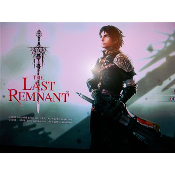 A Review of The Last Remnant for PC