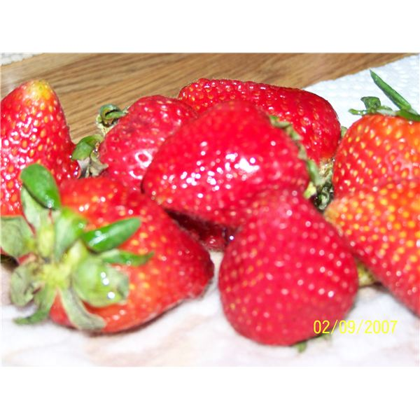 An Alphabetical List of Fruits to Aid in Meal and Snack Planning