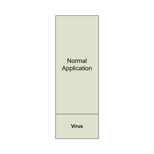 Figure 1: Piggybacking Virus