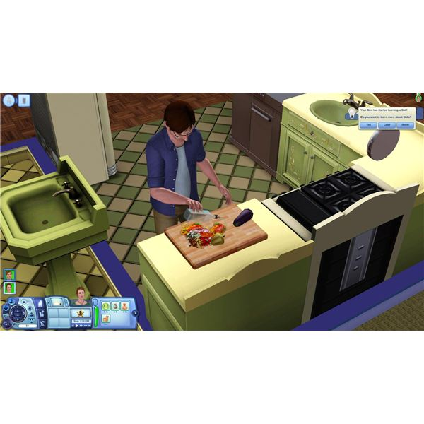 Sims 3 Death and Ghosts Guide Starvation