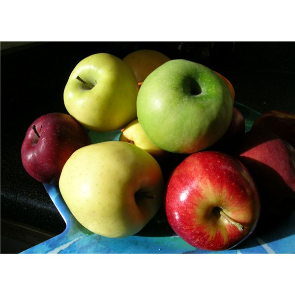 Preschool Math: Apples for Graphing, Patterns and Counting