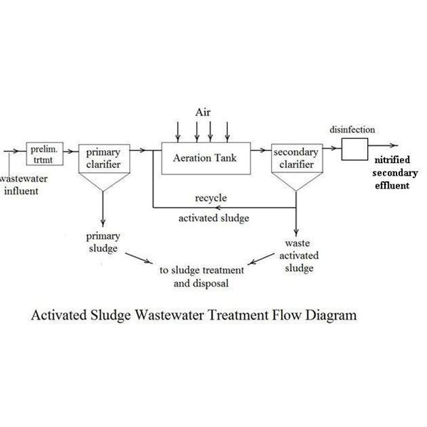 Anammox Wastwater Treatment instead of Nitrification and Denitrification