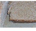 Wheatberry, rice & oat flour bread