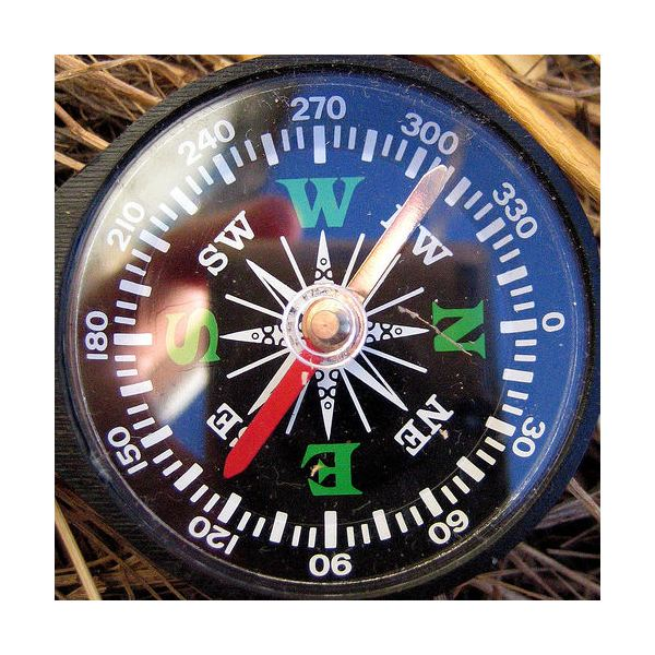 Ship magnetic compass - Marine navigation devices