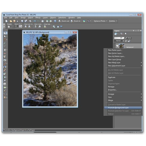 Promote Background to Raster Layer