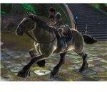 RIFT Chestnut Horse Image