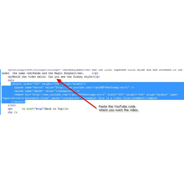 Paste the code in web page.