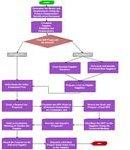 Flow Diagram for RFP Process