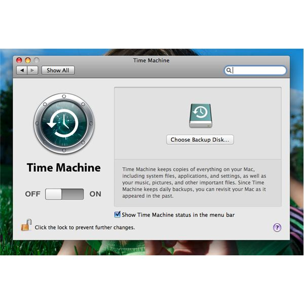 Time Machine pane prior to setup