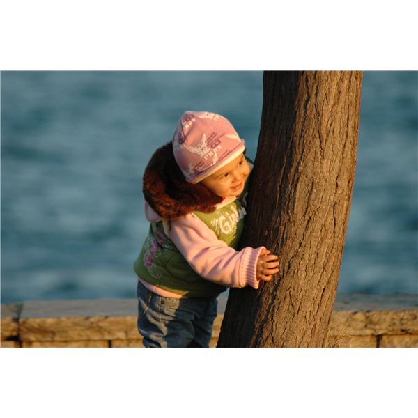 Toddler Behind a Tree