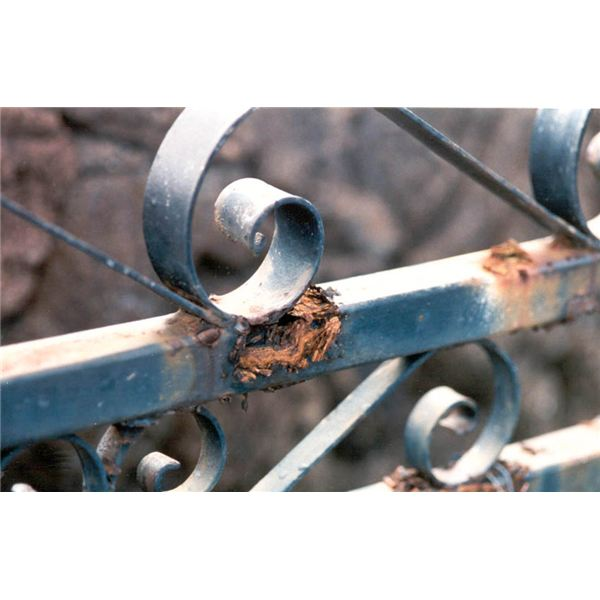 Causes and Prevention of Corrosion
