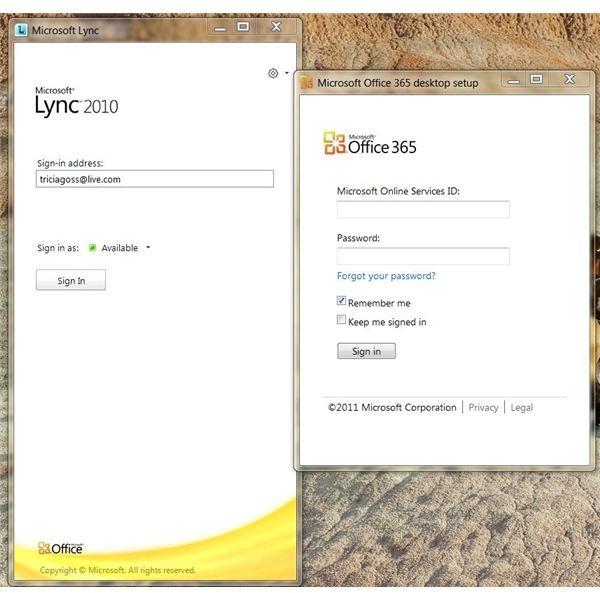 Lync and 365 Desktop Setup