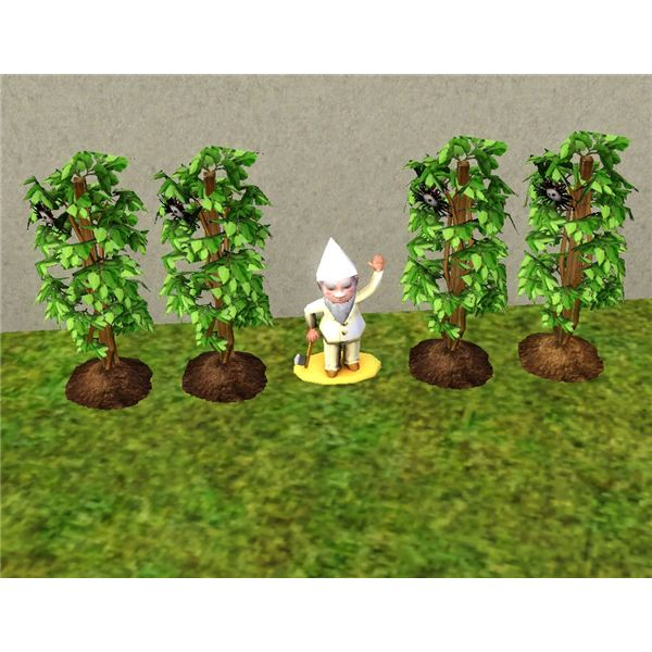The Sims 3 Death Flower