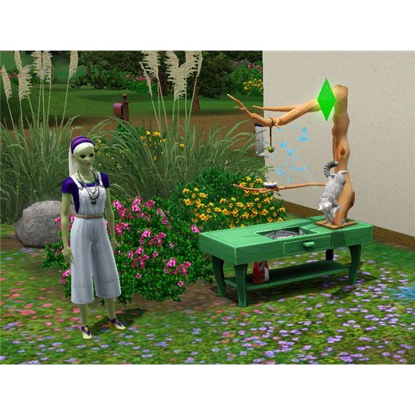 The Sims 3 cat hunting the bird