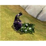 The Sims Medieval angelweed plant