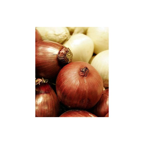 Onion Remedies: Treat Common Problems with Onions