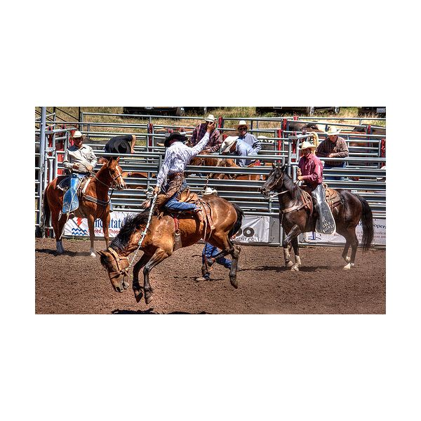 Tips on How to Photograph Rodeo Events