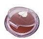 BerryShimmer3