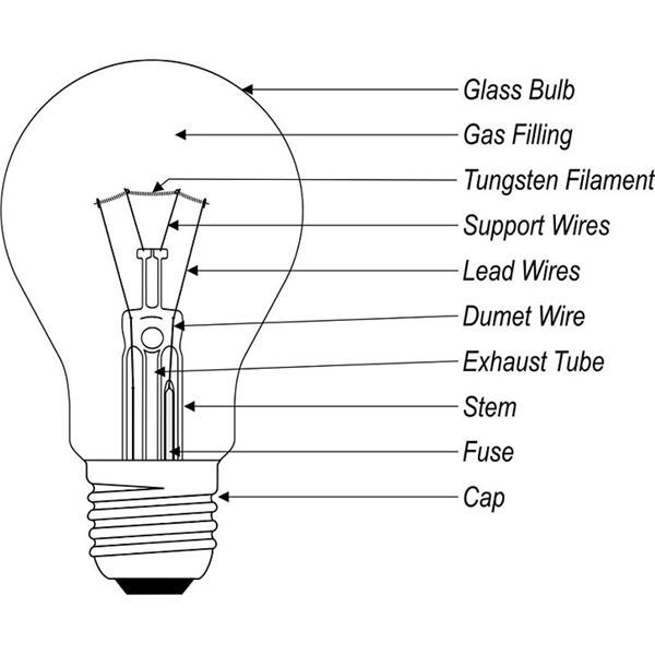 what are the different types of light bulbs rh brighthubengineering com light bulb diagram parts light bulb diagram worksheet