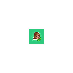 The Sims Social Fleur