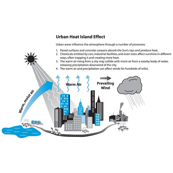 What is Urban Heat Island Effect? What Causes It?