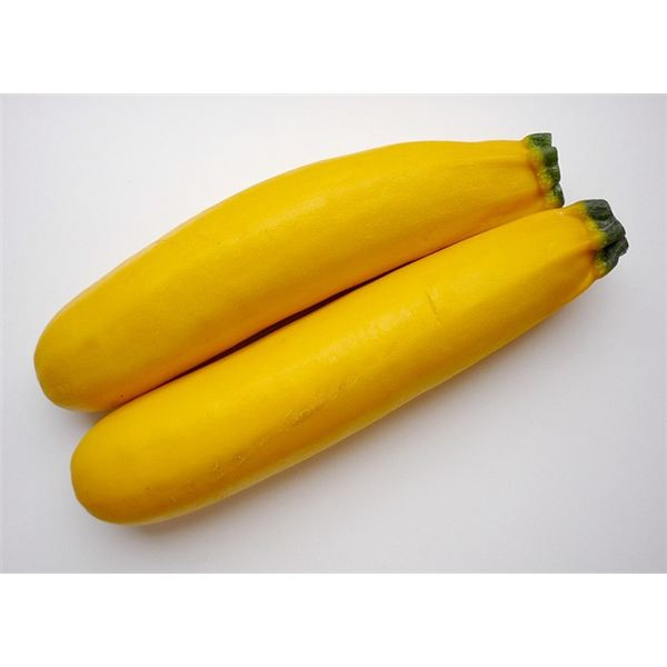Freeze Summer Squash
