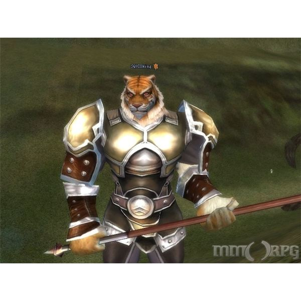 Barbarian Guide: Perfect World International - What are the Human and Tiger Forms?