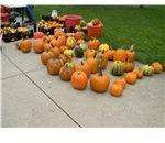 Pumpkins at Farmers Market
