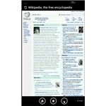 Windows Phone 7 search is possible in web pages