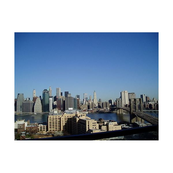 N.Y. View From Apartment Roof