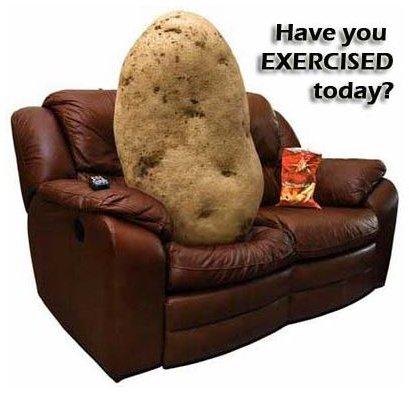 couch-potato copy