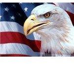 patriotic-backgrounds-eagle-flag