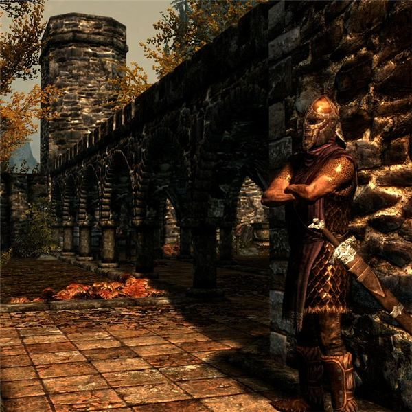 Riften Guard
