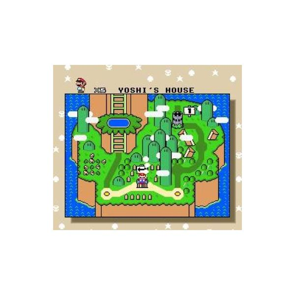 Super Mario World uses an overworld map, much like Super Mario Bros. 3.