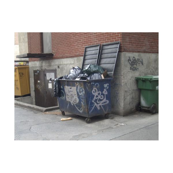 Germs of a dumpster may be a part of ERP therapy