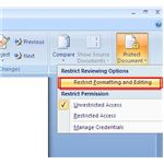 Fig 3 - Restrict Formatting and Editing