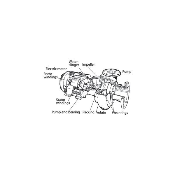 Overhauling Centrifugal Pumps - Procedure to Dismantle and