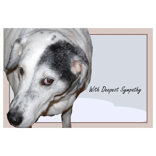 In this sympathy card for dog owners, a favorite pet is memorialized.