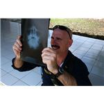 Cmdr. Kurt Hummeldorf, an oral maxillofacial surgeon assigned to the Military Sealift Command (MSC) hospital ship USNS Mercy (T-AH 19), looks at x-rays of an Indonesian patient an the University Hospi