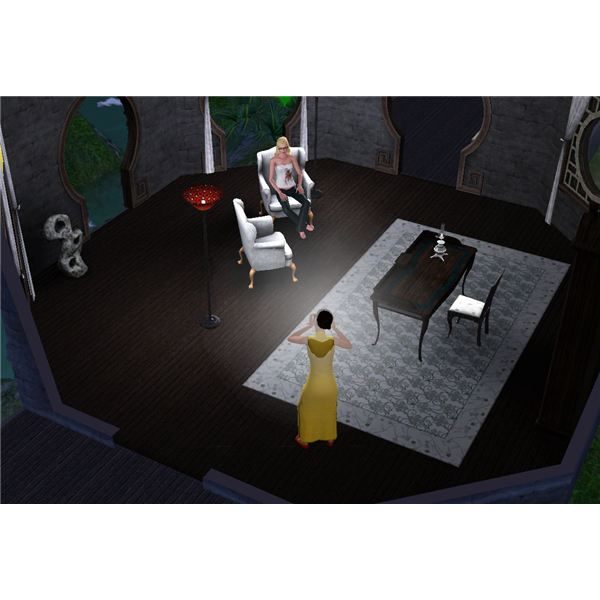 The Sims 3 Celebrity and Paparazzi in China