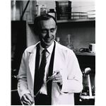 James D Watson - image released into the public domain by the National Institutes of Health