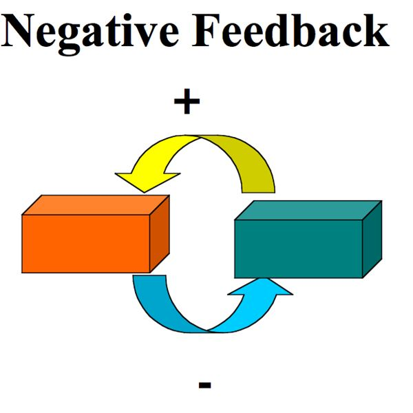 Best Practices in Delivering Negative Feedback