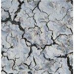 Nasty Cracks IV by Neriah-stock