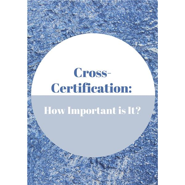 Benefits of Obtaining Cross-Certification for Project Managers
